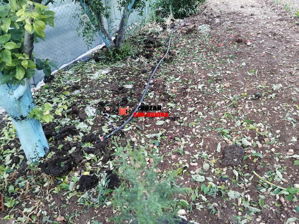 Kısa süreli dolu yağışı ekili alanlara zarar verdi