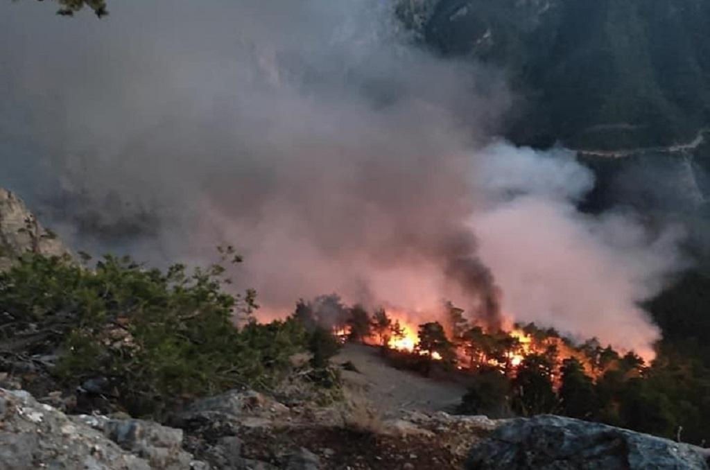 Yıldırım Düştü 3 Kişi Yaralandı Aksaağaç Mahallesinde Orman Yangını Çıktı