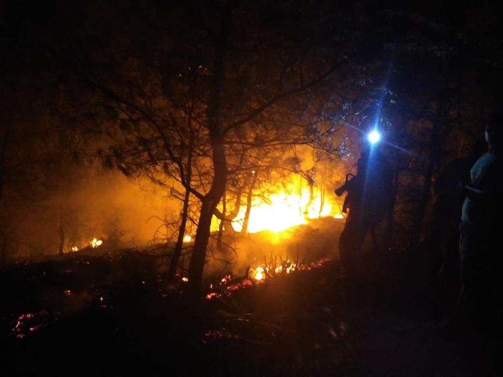 Adana'nın Kozan ilçesinde çıkan orman yangını kontrol altına alındı. İlçemiz Kozan'da çıkan orman yangını kontrol altına alındı. İlçeye bağlı Bağtepe Mahallesi'nde, ormanlık alanda henüz belirlenemeyen nedenle yangın çıktı. İhbar üzerine bölgeye itfaiye ekipleri sevk edildi. Kısa sürede olay yerine ulaşan ekipler, yangını söndürdü.